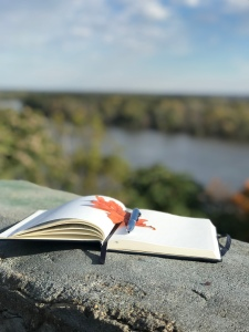 journal on a stone ledge above the Mississippi River